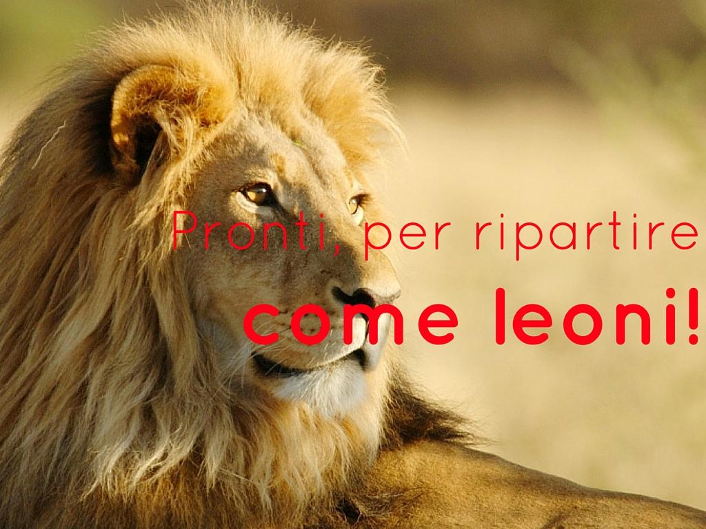 Ripartire come leoni